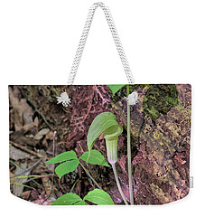 Weekender Tote Bag featuring the photograph Jack-in-the-pulpit by Richard Goldman