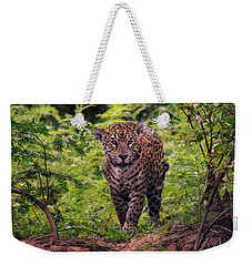 Jaguar      Weekender Tote Bag by Wade Aiken
