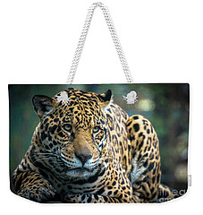 Weekender Tote Bag featuring the photograph Jaguar by Lisa L Silva