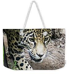 Jaguar Weekender Tote Bag by Suzanne Luft
