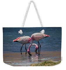 James's Flamingos, Salar De Uyuni, Bolivia Weekender Tote Bag