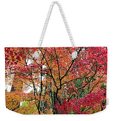 Japanese Maple Trees In Autumn Weekender Tote Bag by Jit Lim