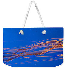 Jelly Fish Weekender Tote Bag by Darcy Michaelchuk