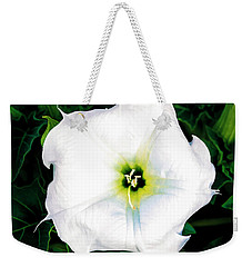 Weekender Tote Bag featuring the photograph Jimson Weed #1 by Lou Novick