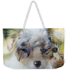 Weekender Tote Bag featuring the photograph Joker by Cathy Donohoue