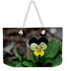 Jonny Jump Up - Relative To A Pansy Weekender Tote Bag