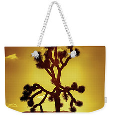 Weekender Tote Bag featuring the photograph Joshua Tree by Stephen Stookey