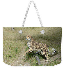 Weekender Tote Bag featuring the photograph Jump 2 by Fraida Gutovich