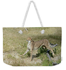 Weekender Tote Bag featuring the photograph Jump 3 by Fraida Gutovich