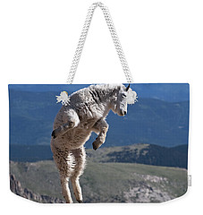 Weekender Tote Bag featuring the photograph Jump by Gary Lengyel
