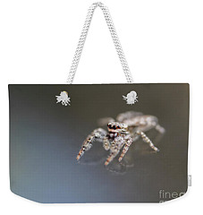 Jumping Spider On Glass Table Weekender Tote Bag