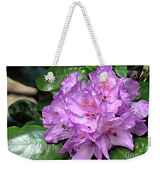 Weekender Tote Bag featuring the photograph June Daphnoides by Chris Anderson