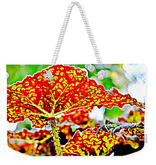Weekender Tote Bag featuring the photograph Jungle Leaf by Mindy Newman