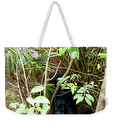 Weekender Tote Bag featuring the photograph Jungle Stream by Francesca Mackenney