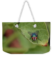 Weekender Tote Bag featuring the photograph Just A Fly by Scott Holmes