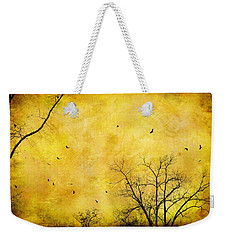 Weekender Tote Bag featuring the photograph Just A Mirror For The Sun by Jan Amiss Photography