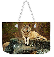 Weekender Tote Bag featuring the photograph Just Chilling by Susan Rissi Tregoning