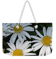 Weekender Tote Bag featuring the photograph Just Daises by Richard Ricci
