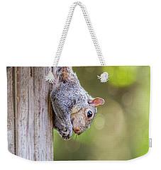Just Hanging Around Weekender Tote Bag