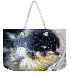 Just Hatched Weekender Tote Bag by Lainie Wrightson