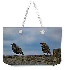 Weekender Tote Bag featuring the photograph Just Resting by Melissa Lane