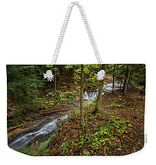 Weekender Tote Bag featuring the photograph Just To Be by Dale Kincaid