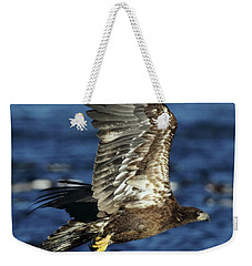 Weekender Tote Bag featuring the photograph Juvenile Bald Eagle Over Water by Coby Cooper