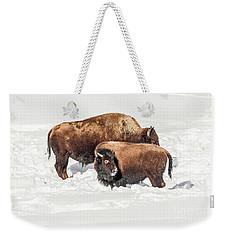 Juvenile Bison With Adult Bison Weekender Tote Bag