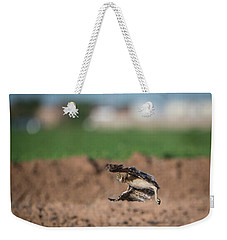 Juvenile Burrowing Owl Testing Out His Wings Weekender Tote Bag