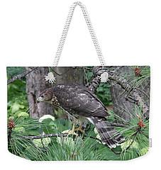 Juvenile Cooper's Hawk Weekender Tote Bag