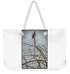 Juvenile Eagle Weekender Tote Bag