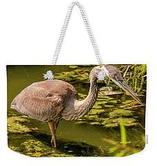 Juvenile Great Blue Heron Weekender Tote Bag