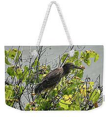 Weekender Tote Bag featuring the photograph Juvenile Heron In Tree by Pamela Walton