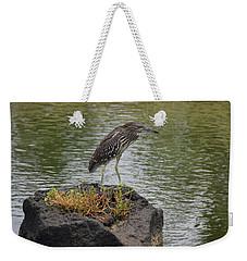 Weekender Tote Bag featuring the photograph Juvenile Heron by Pamela Walton