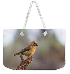 Juvenile Male Red Crossbill Weekender Tote Bag by Doug Lloyd
