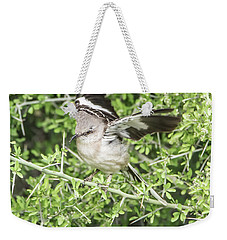 Juvenile Mockingbird With Crossbill Weekender Tote Bag