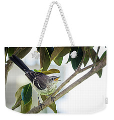 Juvenile Northern Mockingbird Weekender Tote Bag