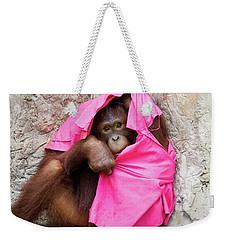 Juvenile Orangutan Weekender Tote Bag by John Black