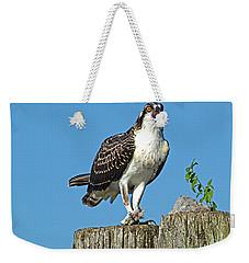 Juvenile Osprey#1 Weekender Tote Bag by Geraldine DeBoer