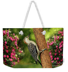 Weekender Tote Bag featuring the photograph Juvenile Red Bellied Woodpecker by Darren Fisher