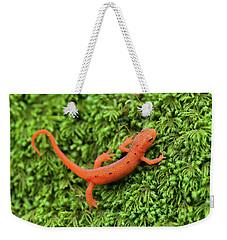 Juvenile Red-eft Green Moss North Carolina Weekender Tote Bag by Mark VanDyke