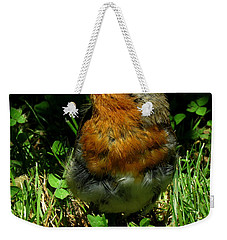 Juvenile Robin Weekender Tote Bag