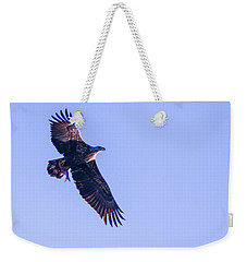 Weekender Tote Bag featuring the photograph Juvie Bald Eagle With Fish In Flight by Jeff at JSJ Photography