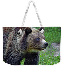 Juvie Grizzly Weekender Tote Bag