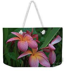 Kaikena Dreams Melia Aloha Keanae Weekender Tote Bag