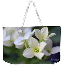 Weekender Tote Bag featuring the photograph Kalanchoe by Victor K