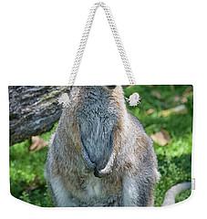 Weekender Tote Bag featuring the photograph Kangaroo by Patricia Hofmeester