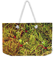 Weekender Tote Bag featuring the photograph Kangaroo Paw Vi by Cassandra Buckley