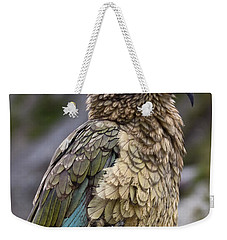 Weekender Tote Bag featuring the photograph Kea Bird by Sally Weigand