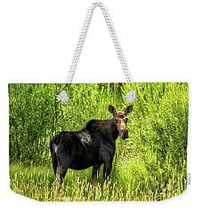 Keep Your Distance Wildlife Art By Kaylyn Franks Weekender Tote Bag